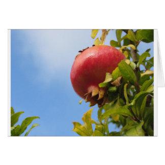 Enig rood granaatappelfruit op de boom in bladeren briefkaarten 0
