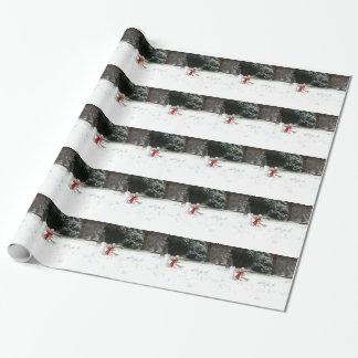 Ernie het Verpakkende Document van de Sneeuw van Inpakpapier