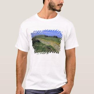 Europa, Engeland, de Muur van Hadrian. De stenen T Shirt