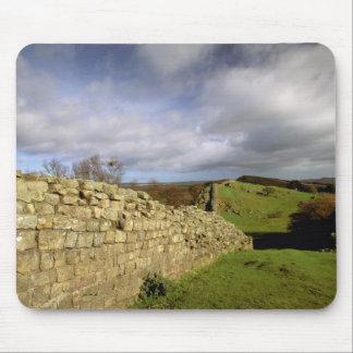 Europa, Engeland, Northumberland. Hadrian Muismat