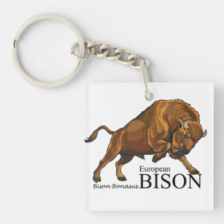 Europese bizon sleutelhanger