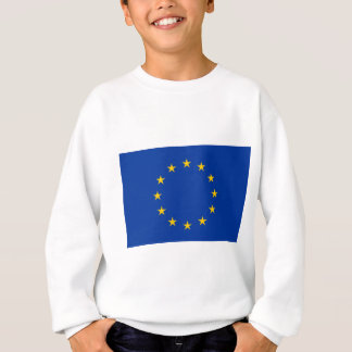 Europese Unie Trui