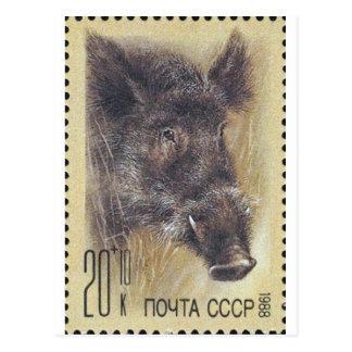 Everzwijn van de Zegel van de USSR ~ het Russische Briefkaart