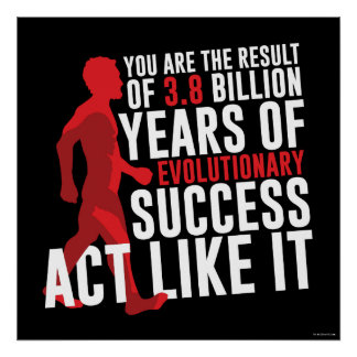 Evolutief Succes Poster