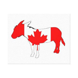 Ezel Canada Stretched Canvas Print