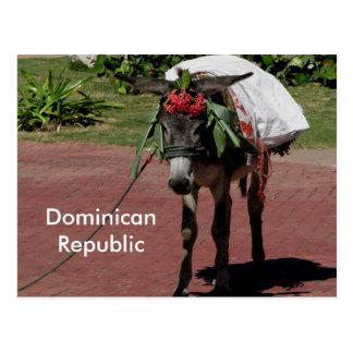 ezel in Dominicaanse Republiek op een briefkaart