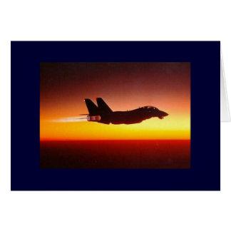 F-14 TOMCAT IN NABRANDER WENSKAART