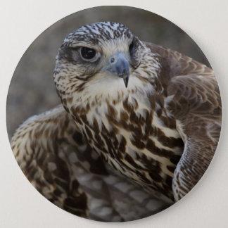Falco cherrug ronde button 6,0 cm