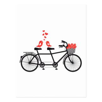 fiets achter elkaar met leuke liefdevogels briefkaart