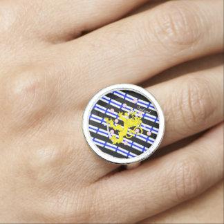 Finse strepenvlag foto ringen