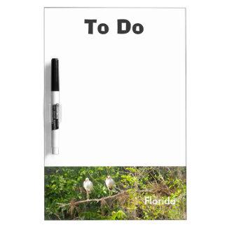 "Florida ""om"" raad te doen whiteboard"
