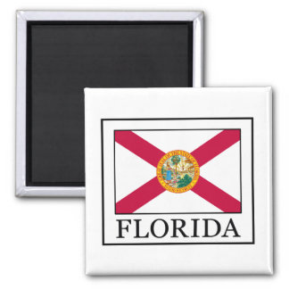 Florida Vierkante Magneet