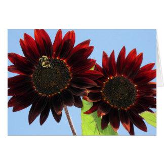 Fluweel Koningin Sunflowers Kaart