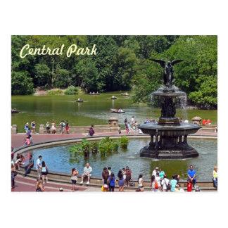 Fontein en Meer in Central Park, de Stad van New Briefkaart