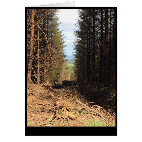 forest kaart