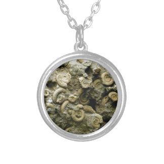 fossiel shells art. zilver vergulden ketting