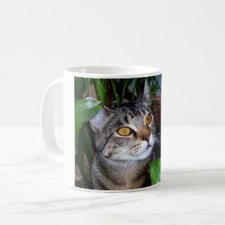 Foto Uw Mok van de Koffie van de Kat van het Koffiemok