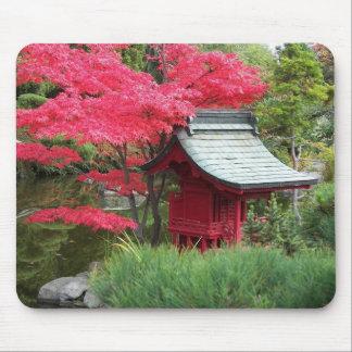 Foto van de Tuin van de herfst de Japanse Muismat
