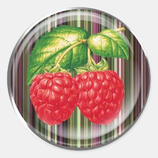 Framboos Ronde Sticker