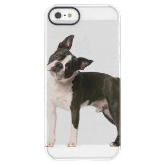 Franse buldog - puppyhond - frenchie hond permafrost iPhone SE/5/5s hoesje