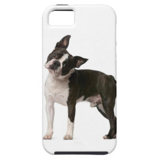 Franse buldog - puppyhond - frenchie hond tough iPhone 5 hoesje