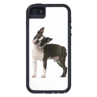 Franse buldog - puppyhond - frenchie hond tough xtreme iPhone 5 hoesje