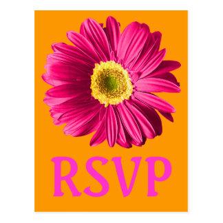Fuchsiakleurig Daisy Flower RSVP of Douane Briefkaart