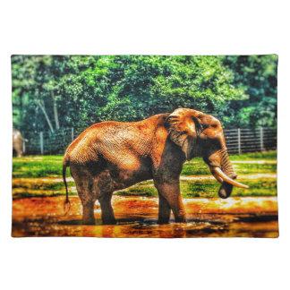 fullsizeoutput_1104 olifant placemat