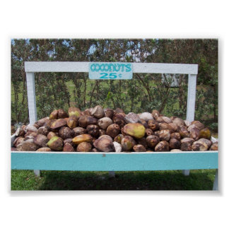 Gaande Kokosnoten Poster