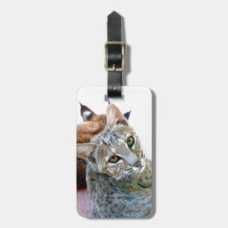 Gazely staart de Bagagelabel Bobcat van |
