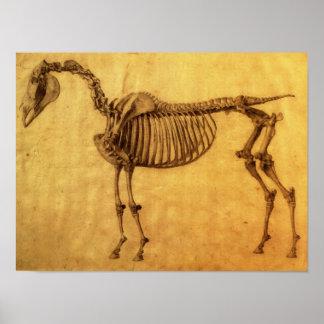 Gebeëindigde Studie voor de Eerste Skeletachtige L Poster