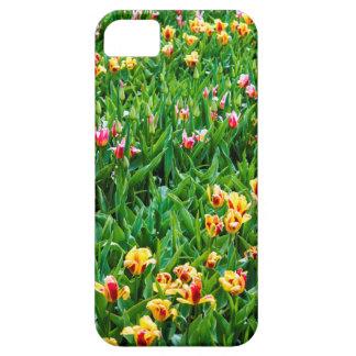 Gebied met Roze en Gele Tulpen Barely There iPhone 5 Hoesje
