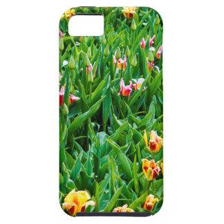 Gebied met Roze en Gele Tulpen Tough iPhone 5 Hoesje