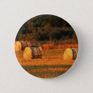 Gebied van hooi ronde button 5,7 cm