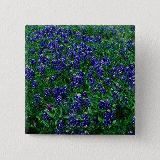 Gebied van Texas Bluebonnets Vierkante Button 5,1 Cm