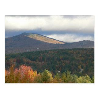 Gebladerte in Stowe Vermont Briefkaart