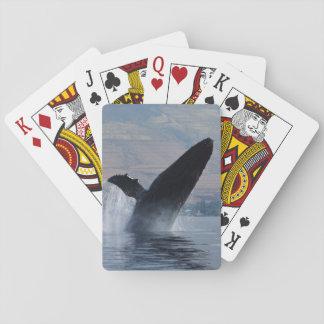 gebochelde walvis het overtreden speelkaarten