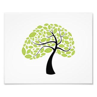 gebogen boomstam eenvoudig blad groene tree.png fotoprints