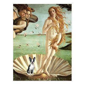 Geboorte van het Venus van het Trefpunt - Boston Briefkaart