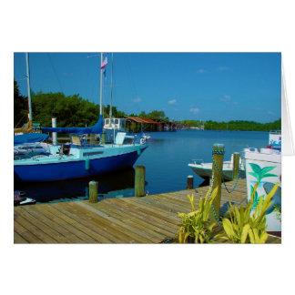 gedokt boot-Florida Briefkaarten 0