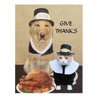 Geef Bedankt Briefkaart