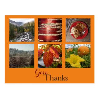 Geef Bedankt (de Collage van de Herfst) Briefkaart