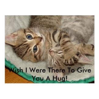 Geef een Briefkaart van het Kat van de Omhelzing