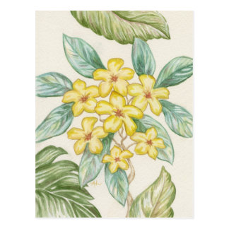 Geel briefkaart Plumeria
