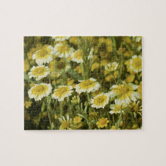 Geel en Witte Wildflowers Puzzel