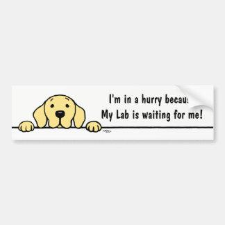 Geel Labrador dat op u let de Sticker van de Bumpersticker