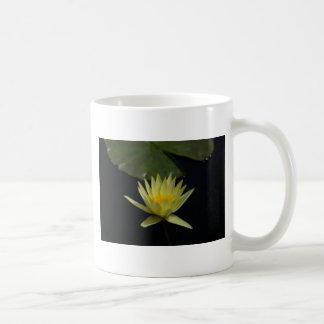Geel Lotus Waterlily Koffiemok
