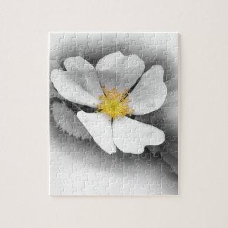 geel op schaduwen van grijs foto puzzels