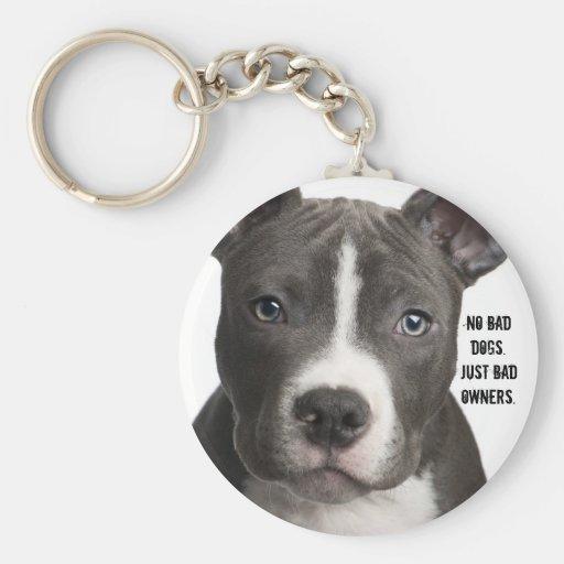 Geen Slechte Honden. Slechte enkel Eigenaars Keych Sleutel Hanger