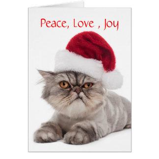 Gekke Norse Kat met de Kerstkaart van het Pet van Wenskaart